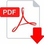 pdf icon 300